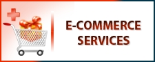PakEagle.Com Pak Eagle Enterprises E-Commerece Services